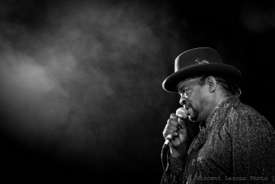 Dave Riley & The Memphis Blues Caravan # photos @ Festival Blues in Chédigny | 11 août 2012