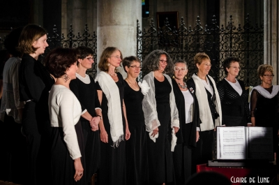 Collectif Aria Magenta # photos @ Eglise Saint Julien, Tours | 28 septembre 2014